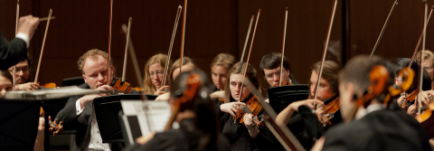 String section in an orchestra concert.