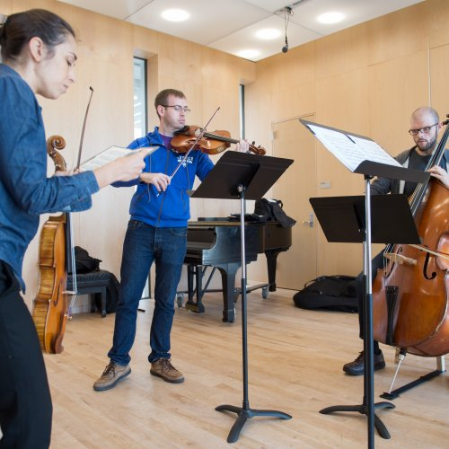 chamber ensemble coaching